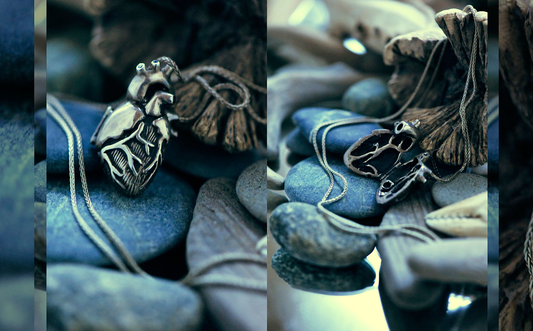 Anatomical-Heart-by-Peggy-Skemp_RHanelPhotography_06